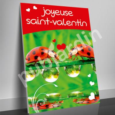 A20- Affiche Saint Valentin coccinelle