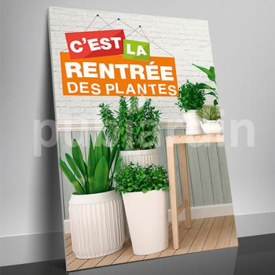 A4- Affiche rentrée des plantes