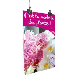 A10- Affiche Orchidée rose