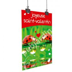 Affiche Saint Valentin coccinelle