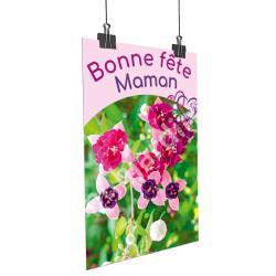 A31- Affiche Bonne Fête Maman - Ancolie