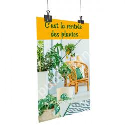 Affiche rentrée des plantes vertes