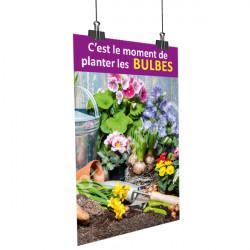 A52- Affiche planter les bulbes