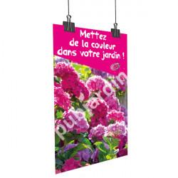 A62- Affiche Hortensia rose