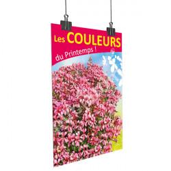 A67- Affiche les couleurs du printemps