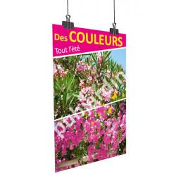 A71- Affiche été-laurier rose-bougainvillier