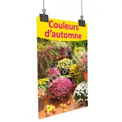 A79- Affiche couleurs d'automne - chrysanthèmes