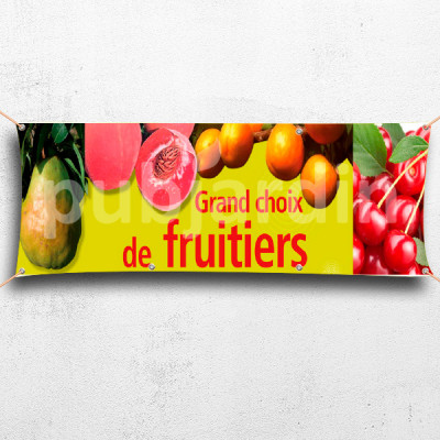 C10-Banderole Grand choix de fruitier