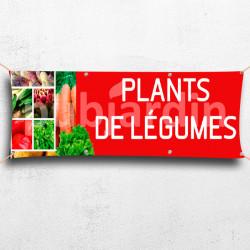 C07-Banderole Plants de Légumes
