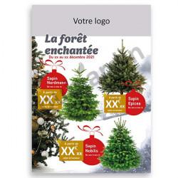 F6 - Flyer La forêt enchantée