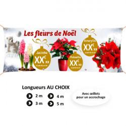 C100 - Les fleurs de Noël personnalisable