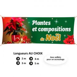 C98 - Plantes et compositions de Noël