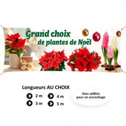 C96 - Grand choix de plantes et compositions