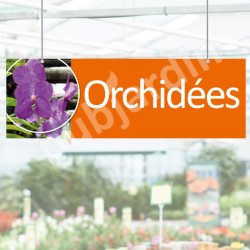 P10 - Panneau Orchidées en Dibond® ou PVC