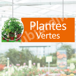 P11- Panneau plantes vertes