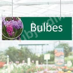 P26- Panneau Bulbes en Dibond®