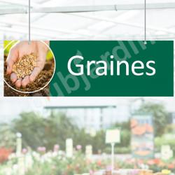 P27- Panneau rigide graines